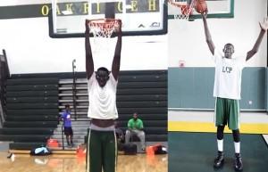 tallest-basket-ball-player-ever-620x399